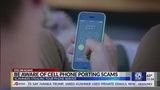 Cell phone porting scams targeted at stealing your phone number and service