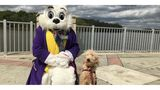 PetSmart offers free Easter photos for pets