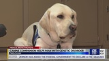 Canine companion helps man with genetic disorder